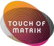 logo touchofmatrix